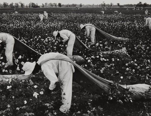 Representing slavery: rereading the visual narrative
