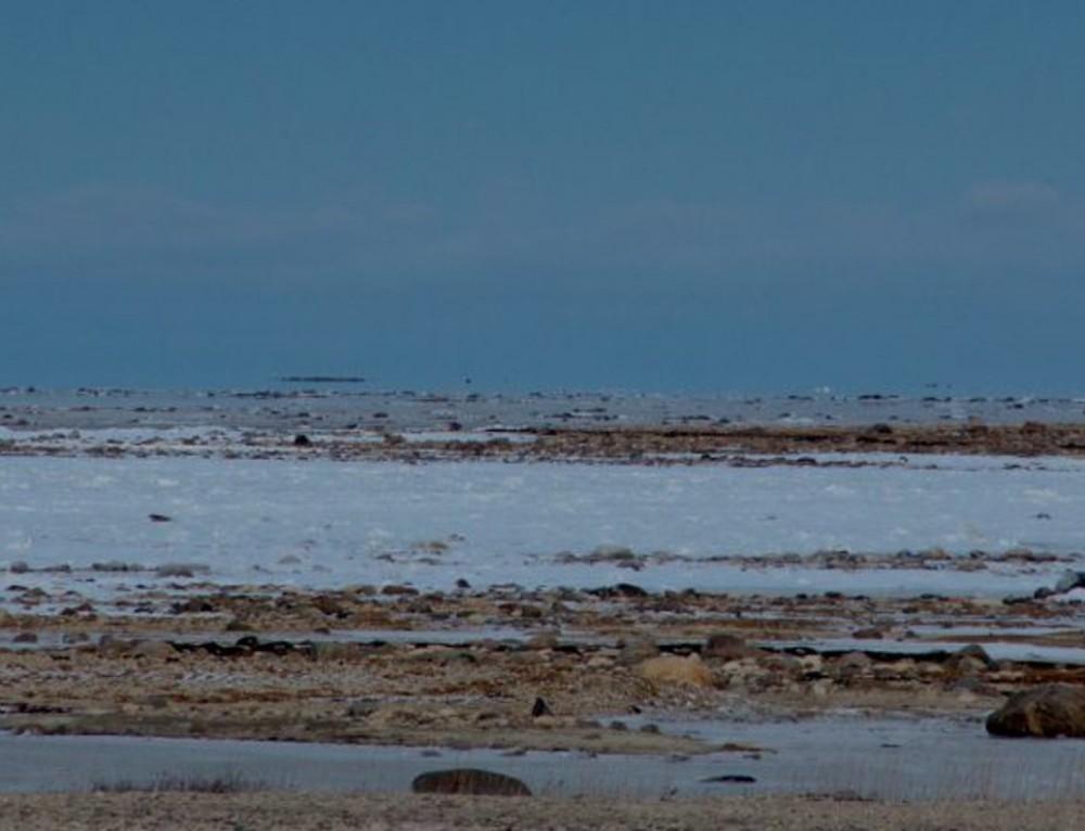 Migration Reporting: Manitoba